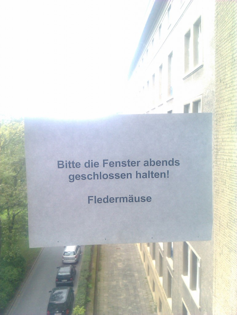 Klinikum Friedrichshain-nadine