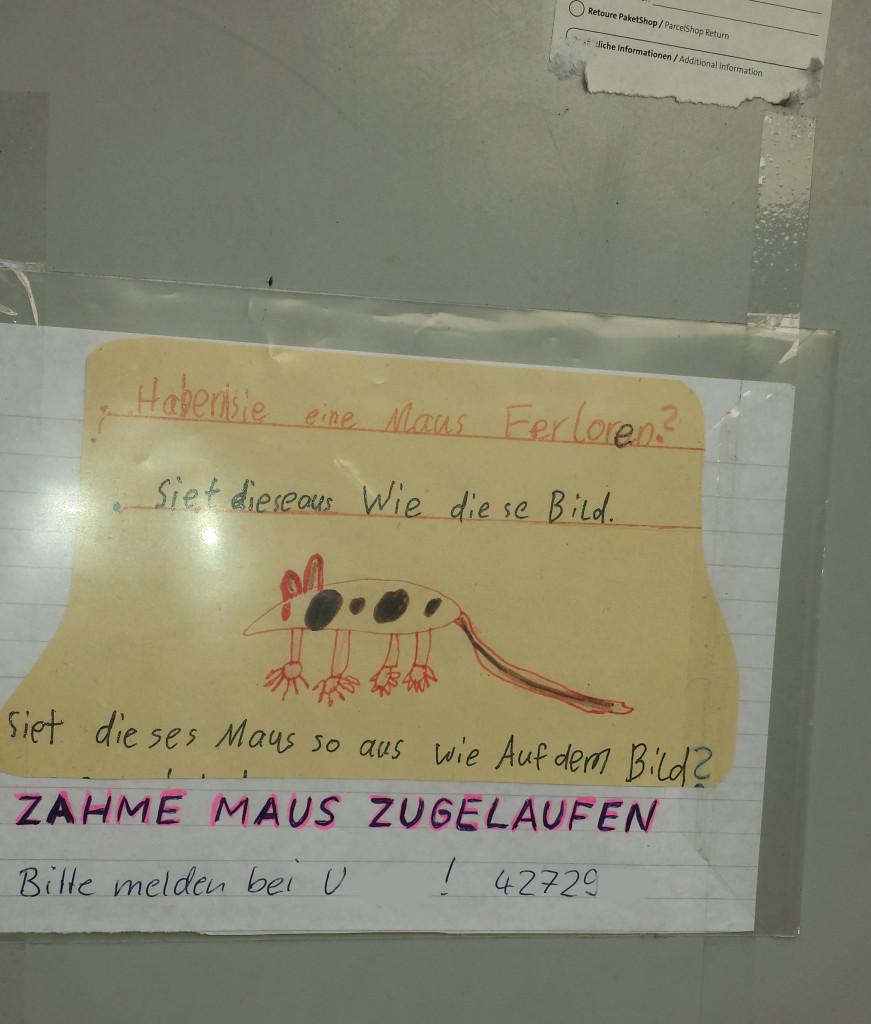 DasYuri-lichtenberg_lueckstr-b