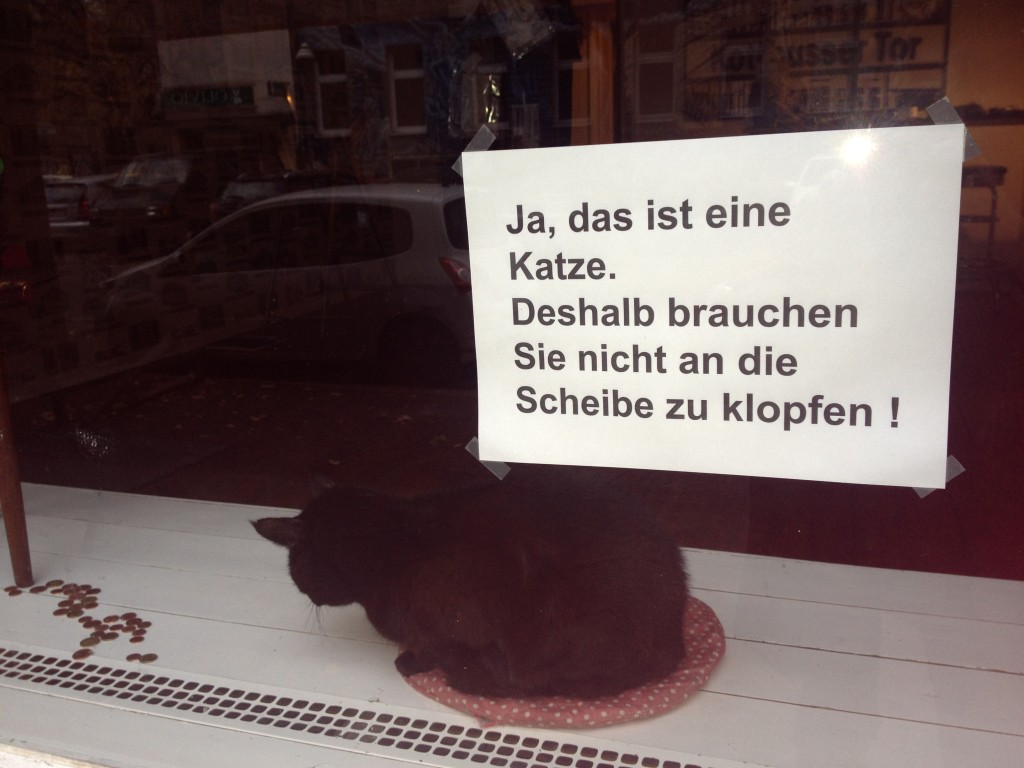 Zickenplatz_Xberg_Emma Burns