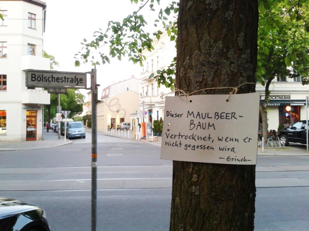 AA Boelschestr_12587 Friedrichshagen_Jason-b