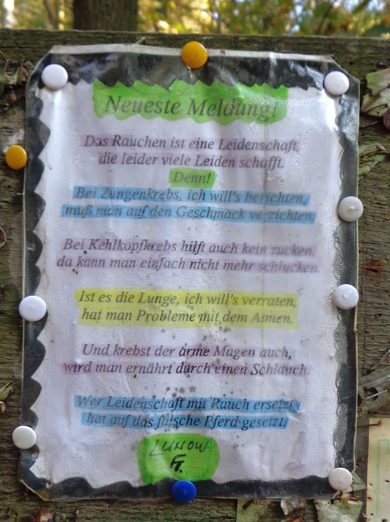 AA Grunewaldsee_Wilmersdorf_Nicolas_Kommentar Unaufdringliche Lebensverbesserung