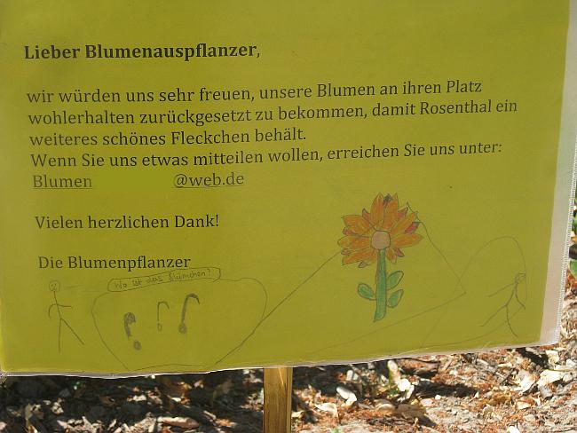 Blumen-Berlin-Dieb