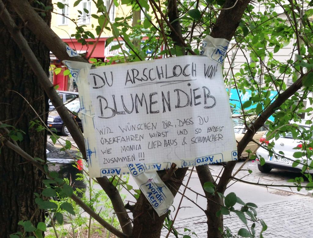 Blumendieb-Arschloch-Berlin-Schuhmacher