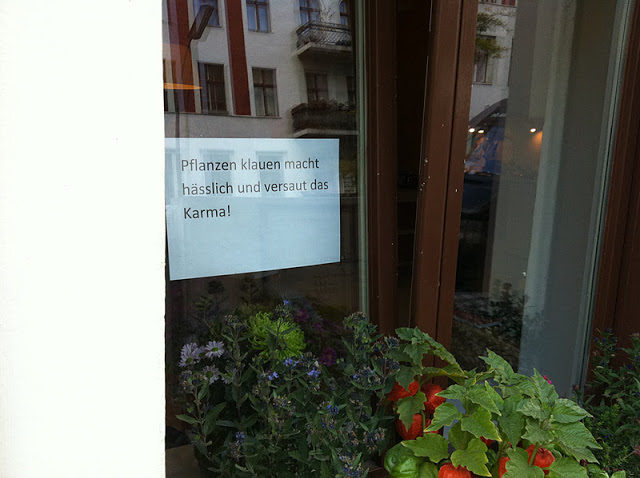 Pflanzen klauen-Karma
