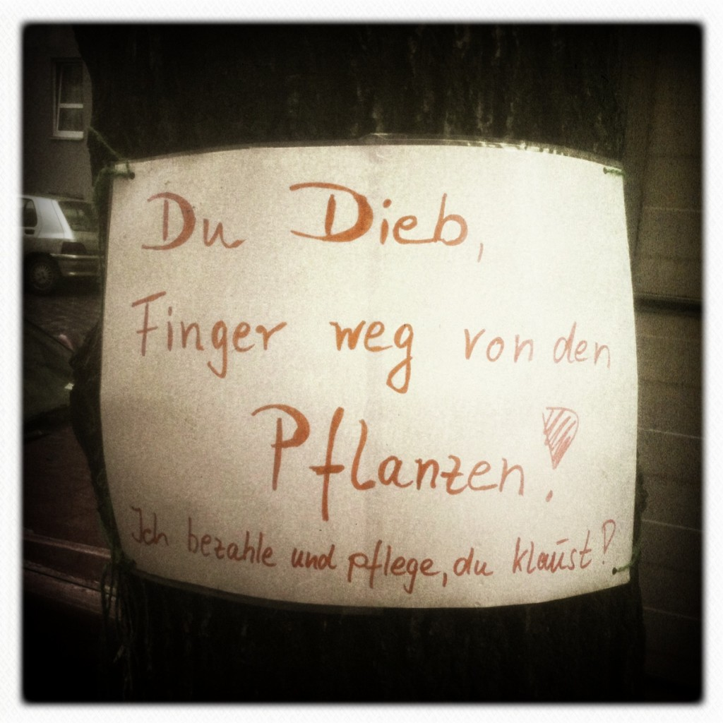 Pflanzendieb-Dieb-Berlin-Neukoelln