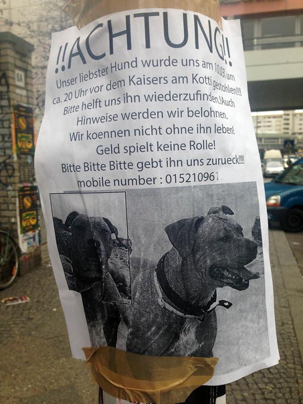 Hundedieb Berlin Kreuzberg