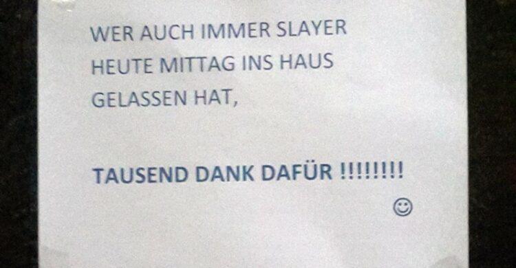 Haustier in Berlin