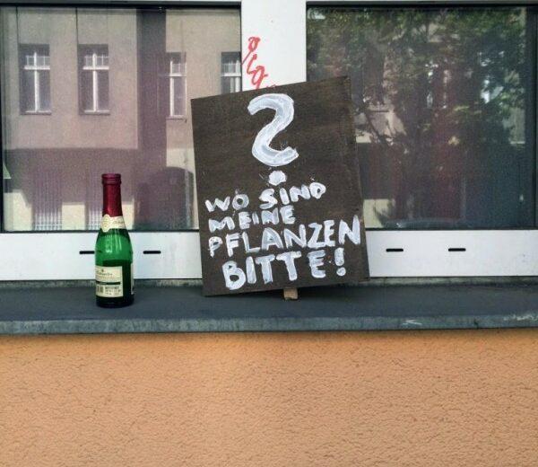 Pflanzendieb Berlin