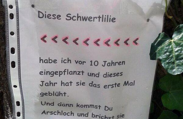 Pflanzendieb im Kiez Nachbarshaft Berlin