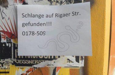 Schlange entlaufen Berlin
