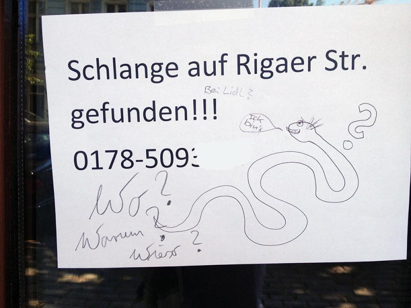 Schlange vermisst entlaufen verschwunden Berlin