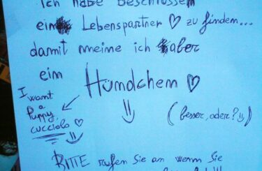 Lebenspartner Berlin Single Wie finde ich einen richtigen Partner
