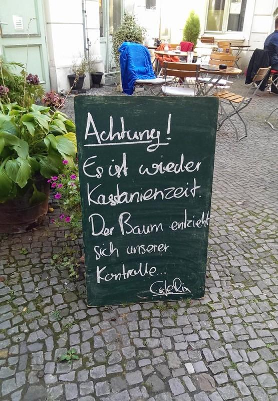 Kastanienzeit Berlin Achtung vor Kastanien fallen vom Baum