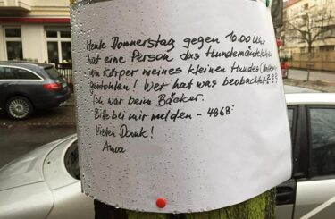 Hundemantel kaufen Berlin