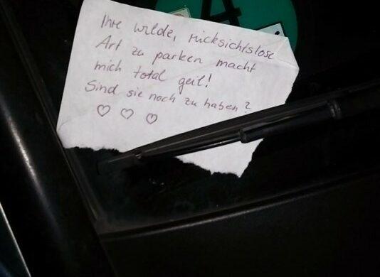 Dumm-geparkt_Schlecht-eingeparkt_Parkidiot