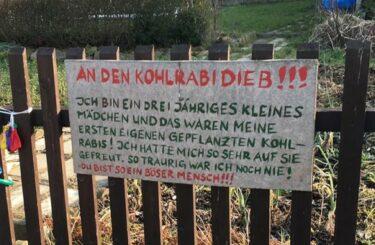 Kleingarten in Berlin