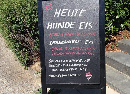 Hunde-Eis Berlin