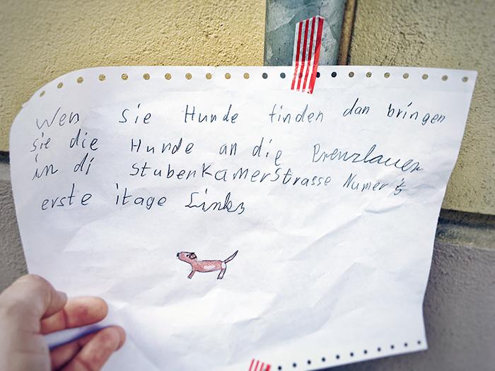 hunde-in-berlin
