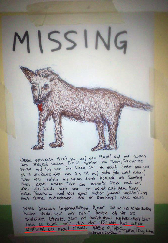 hund-verloren-berlin