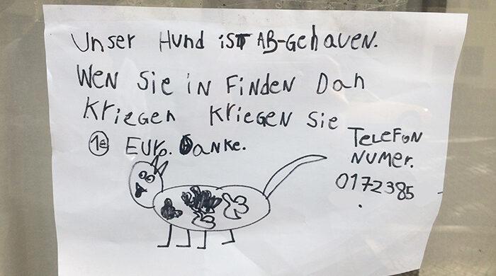 kinder-sind-suess