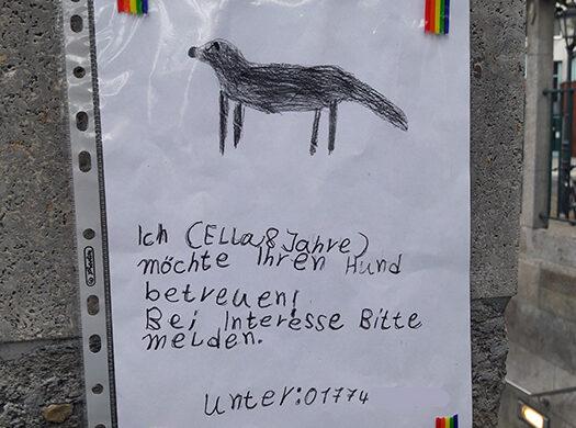 hundebetreuung-berlin