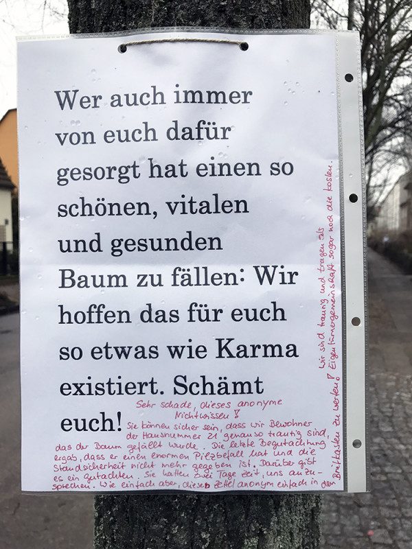 Baumfällung Berlin
