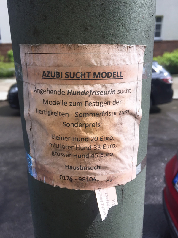 Hundefriseur Berlin