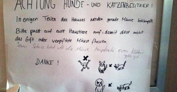 Gift Maeuse Katzen gefaehrlich