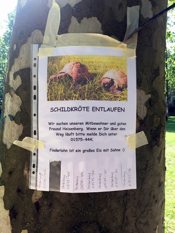 Wer Hat Heisenberg Gesehen Notes Of Berlin