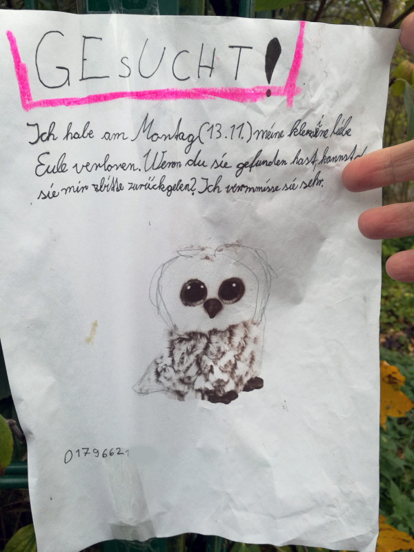 Eule verloren Berlin