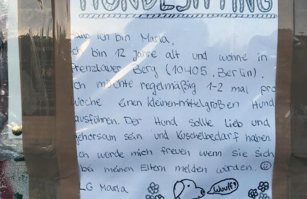Hundesitting Berlin