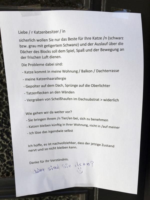 Katze Dach Berlin