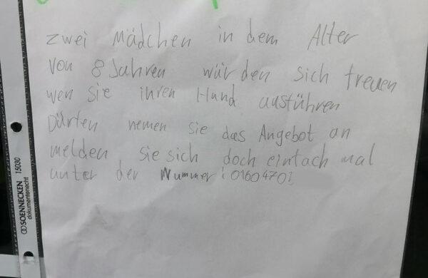 Hund Gassi gehen Berlin