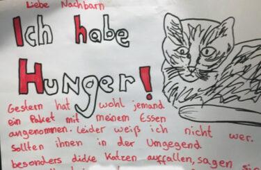katzenfutter berlin