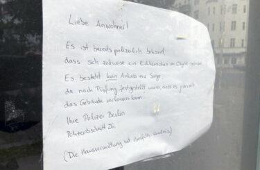 Eichhörnchen Berlin